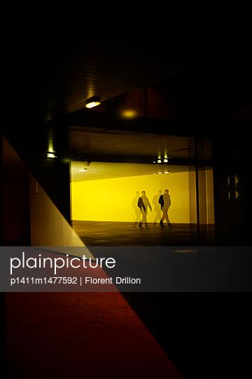 p1411m1477592 von Florent Drillon