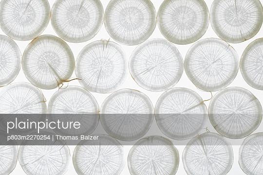 Radish - p803m2270254 by Thomas Balzer