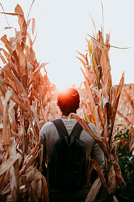 Man with backpack walking in agricultural field during sunset - p300m2225500 by Eva Blanco