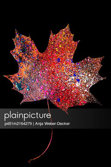 p451m2164279 by Anja Weber-Decker