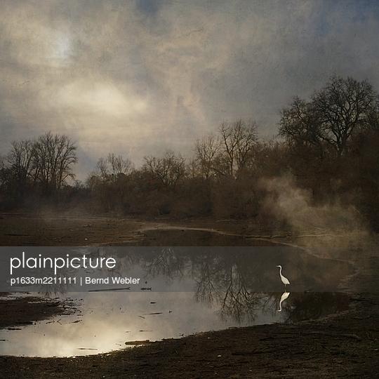The Clearing Fog - p1633m2211111 by Bernd Webler