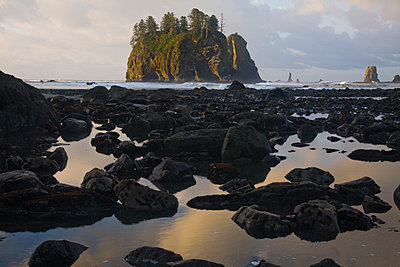 Sunrise light strikes a large sea stack at Second Beach, Olympic National Park, Washington. - p343m1202335 by Ethan Welty
