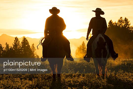 p1100m1520209 von Mint Images