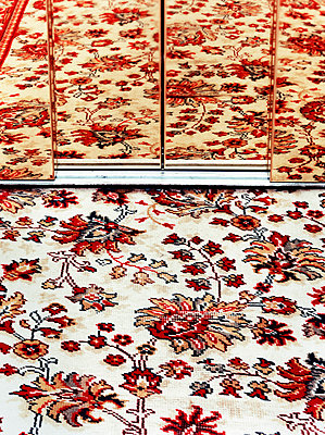 A mirrored rug pattern - p3013176f by fStop