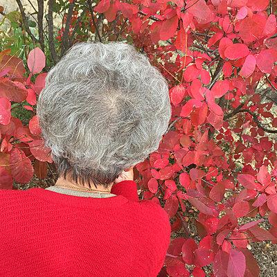 Senior woman - p1468m1559371 by Philippe Leroux