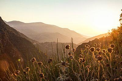 Greece, Peloponnese, Elis, Hills at sunset near Figalia - p300m1588137 von Maria Maar