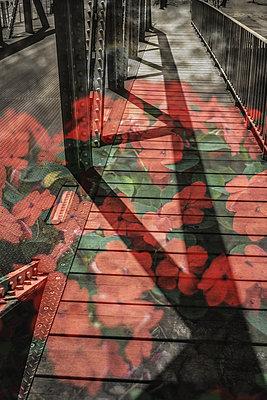 Painted bridge - p1402m2037685 by Jerome Paressant