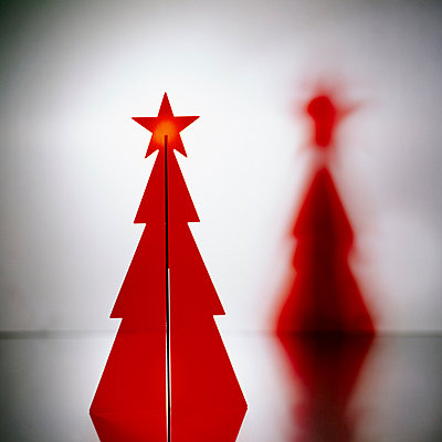 Christmas star - p4251212 by bildhaft