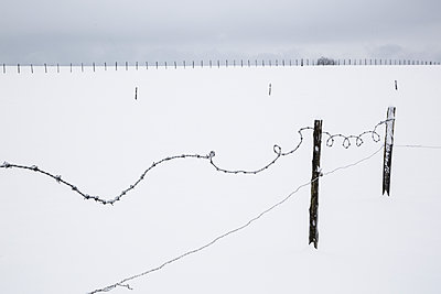 Twisted barbed wire in the countryside - p1682m2260749 by Régine Heintz