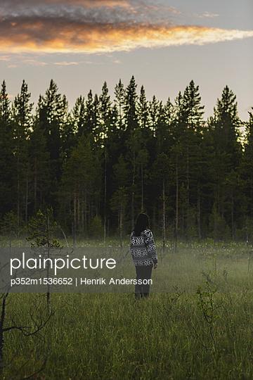 p352m1536652 von Henrik Andersson