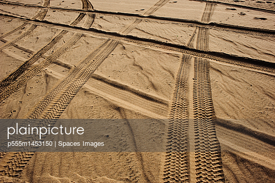 Tracks in . Sand - p555m1453150 by Spaces Images