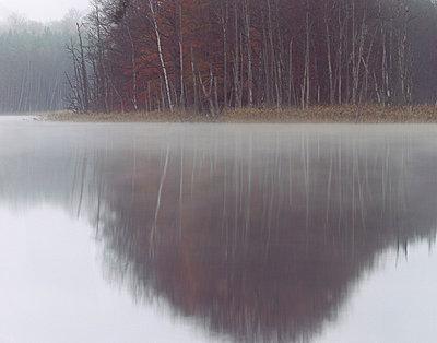Spiegelung auf der Wasseroberfläche - p1016m792609 von Jochen Knobloch
