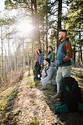 Friends hiking in sunny woods - p1192m2094014 by Hero Images