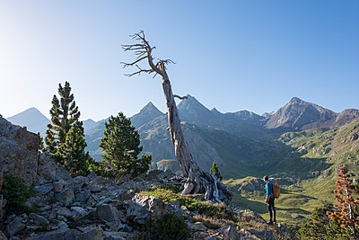A walker takes in a view of the Pyrenees from near Refugio Respomuso along the GR11 long distance trekking path, Huesca, Spain - p871m2057968 by Alex Treadway
