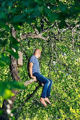 Man sitting on tree branch - p352m2120958 by Lauri Rotko