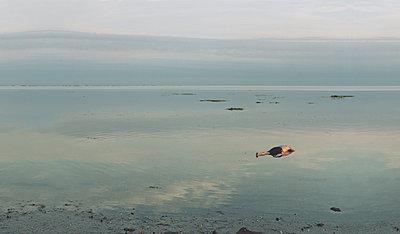 Dead man in water - p444m960715 by Müggenburg
