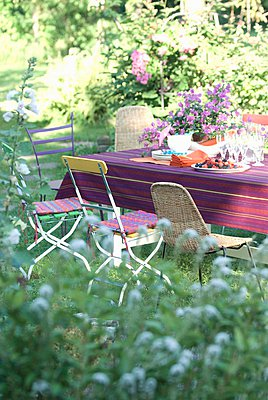 View peeping through hazy green plants into garden with various chairs at a table set for a summer meal with a bowl of bougainvillea - p1183m995855 by Manduzio, Matteo