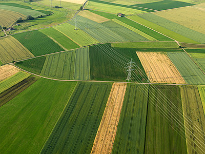 Aerial view vibrant green agricultural crops, Donaueschingen, Baden-Wuerttemberg, Germany - p301m2017661 by Stephan Zirwes