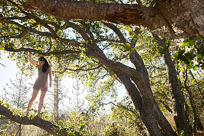 Young woman climbing in tree - p956m1136858 by Anna Quinn