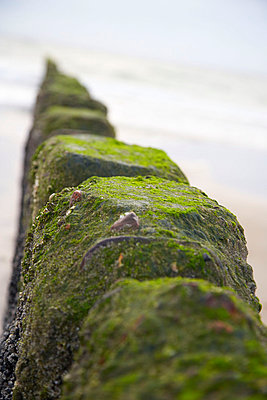 Coastal defence - p1205m1020963 by Christina Anzenberger-Fink