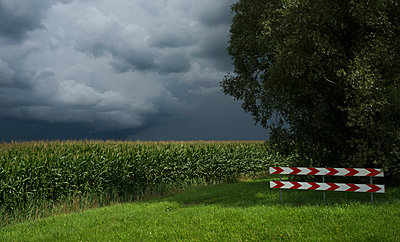 A thunderstorm over corn and grass fields, Oosterhout, North Brabant, Netherlands - p429m1494177 by Mischa Keijser