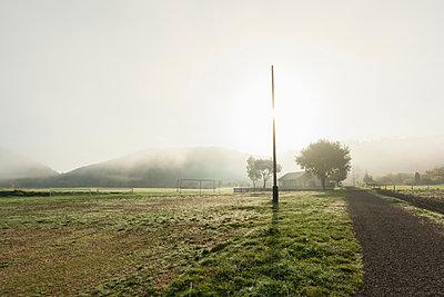 Fog over dirt road through field, Meerfeld, Rheinland-Pfalz, Germany - p429m1514013 by Mischa Keijser