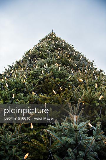 Weihnachtsbaum - p954m1516610 von Heidi Mayer