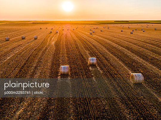 Aerial view of hay bales lying in plowed field at sunset - p300m2293741 by oticki