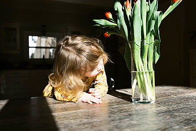 Little two year old girl and her tulips. - p1166m2162820 by Cavan Images