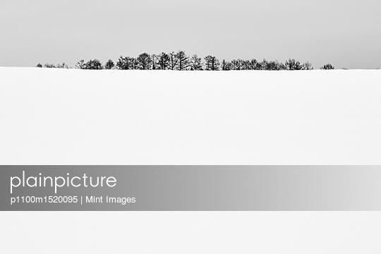 p1100m1520095 von Mint Images