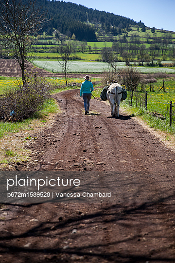 p672m1589528 von Vanessa Chambard