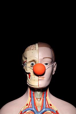 Anatomie des Clowns - p237m886629 von Thordis Rüggeberg