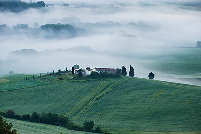 Morning fog in the Tuscany - p533m1589686 by Böhm Monika