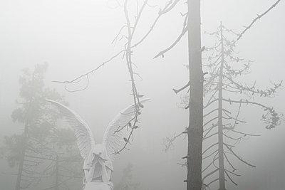 Engel Im Nebel - p1275m2185945 von cgimanufaktur