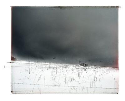 Primitive - p1007m710559 by Tilby Vattard