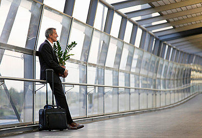 Businessman with luggage and plant - p42917239f by Henglein and Steets