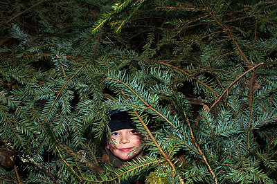 A boy looking up among pine branches - p8477856 by Ulf Lundin