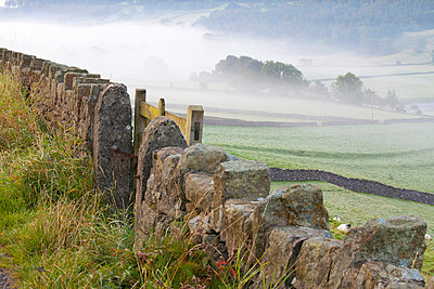 Stone Fence, Burnsall, Yorkshire Dales National Park, Yorkshire, England, United Kingdom, Europe - p871m807434 by Miles Ertman