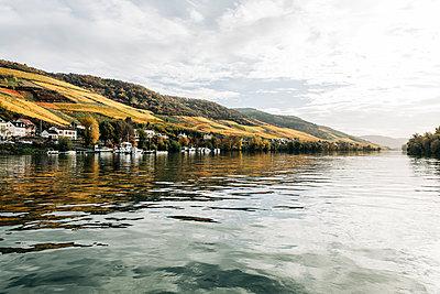Bacharach am Rhein, Hesse - p713m2283526 by Florian Kresse
