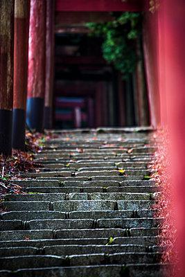 Steps towards a Japanese sanctuary - p958m1584167 by KL23