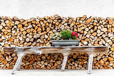 Holzbank vor Brennholz - p248m1051748 von BY