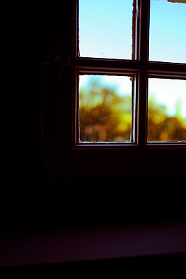 Blick aus dem Fenster - p432m2022313 von mia takahara