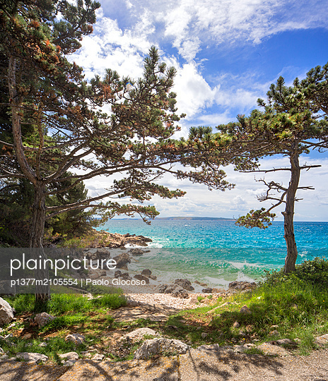 Croatia, Kvarner, Rab island, Mediterranean sea, Adriatic sea, Adriatic Coast, Rab,  - p1377m2105554 by Paolo Giocoso