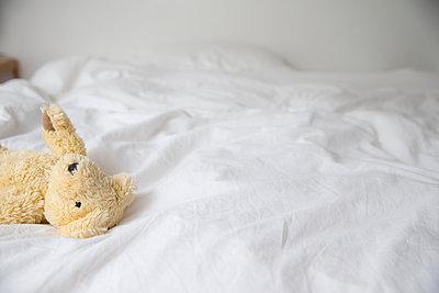 Gelber Teddy auf dem Bett - p1212m1116037 von harry + lidy