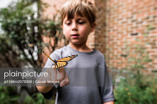 Monarch butterfly sitting on boy's hand as he looks on in wonder - p1166m2078306 by Cavan Images