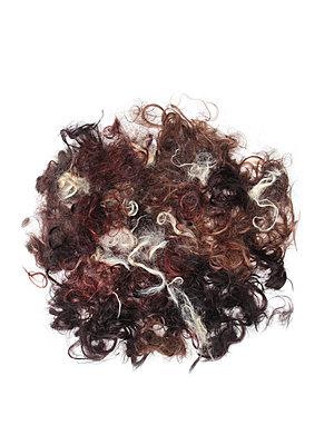 Verschiedenfarbige Haare - p1519m2064284 von Soany Guigand