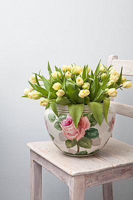 Tulpen - p441m886111 von Maria Dorner