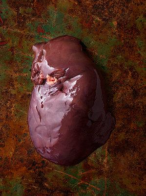 Liver - p1134m949176 by Pia Grimbühler