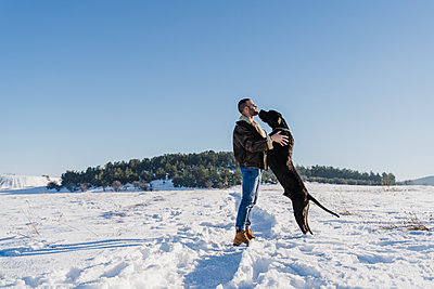 Playful Great Dane dog leaning on man while standing in snow against clear blue sky - p300m2250980 by Eva Blanco