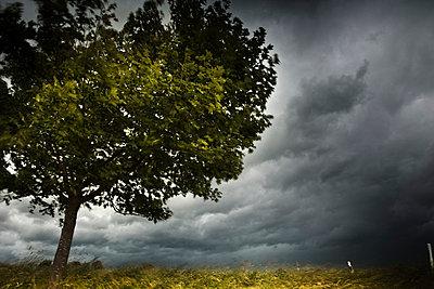 Sturm - p6470090 von Tine Butter